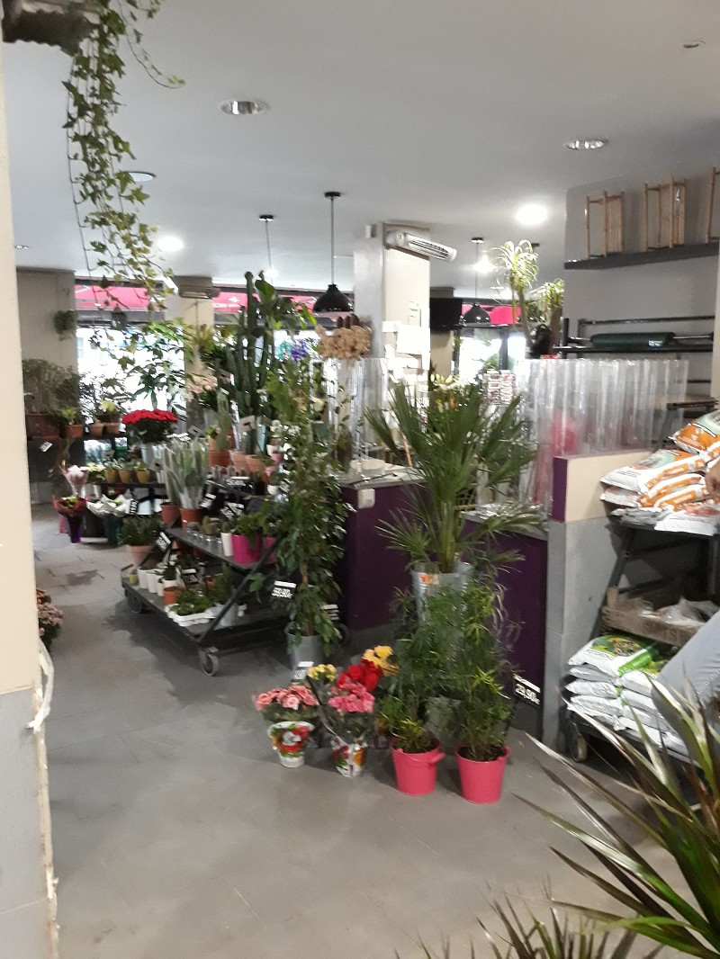 Vente commerce - Paris (75) - 110.0 m²